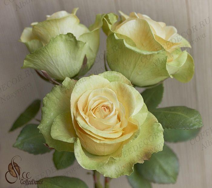 Роза с фактурными лепестками Peach Avalanche Зефирный шелковый фоамирана цветы из фоамирана