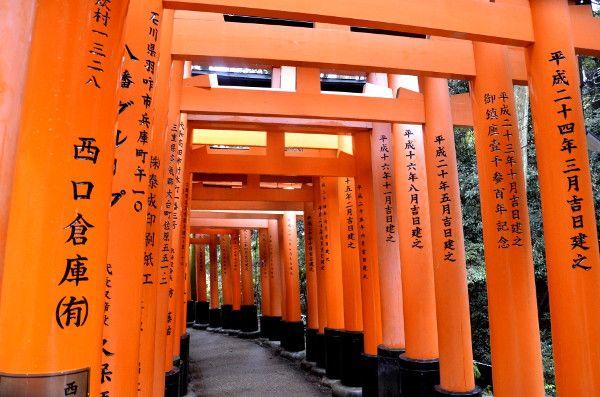 http://elpachinko.com/viaje-a-japon/kioto-fushimi-inari/  El santuario Fushimi Inari de Kioto, puertas rojas a través de un paraguas transparente
