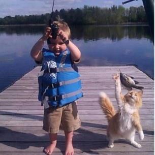 Catfish?Gone Fish, Cat Fish, Catfish, Teamwork, Summer Bucket Lists, Funny Cat, Kids, Summer Buckets Lists, Kitty