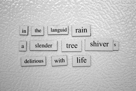 haiku poems about rain - photo #11