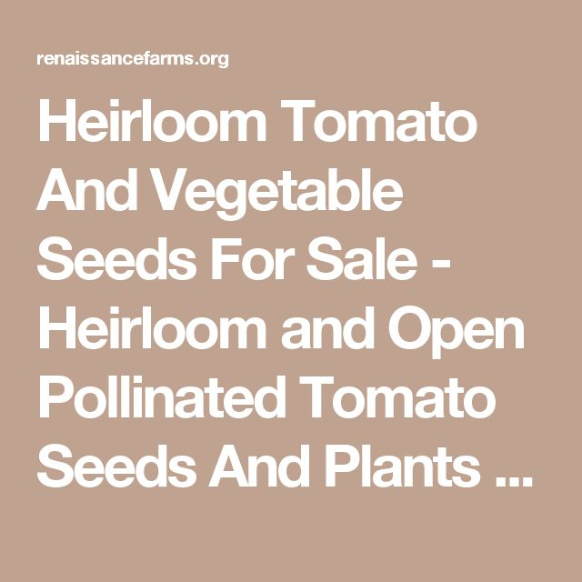 heirloom tomato and vegetable seeds for sale heirloom and open pollinated tomato seeds and plants
