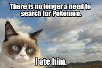 Grumpy Cat eats Pokemon
