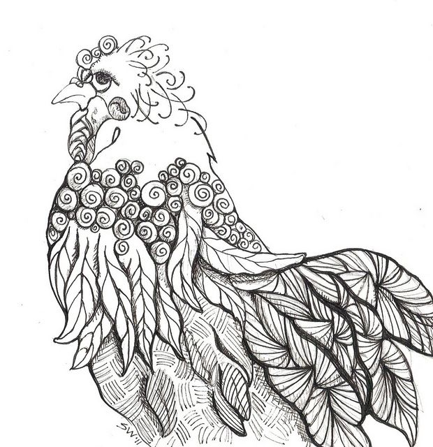 Coloring Pages For Adults Rooster : Best zentangles bird and feather images on pinterest