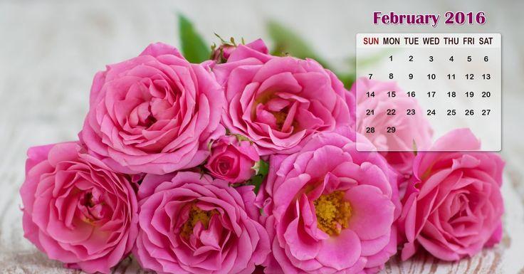 Holidays Idea in February