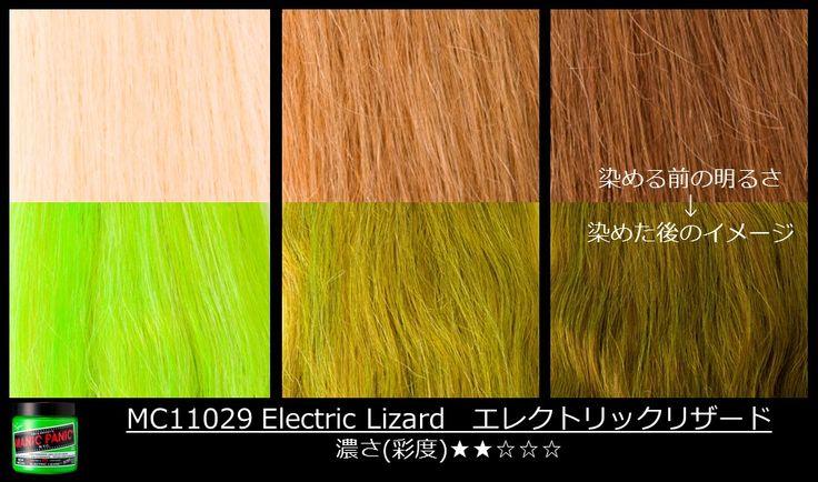 MC11029_Electric Lizard エレクトリックリザード