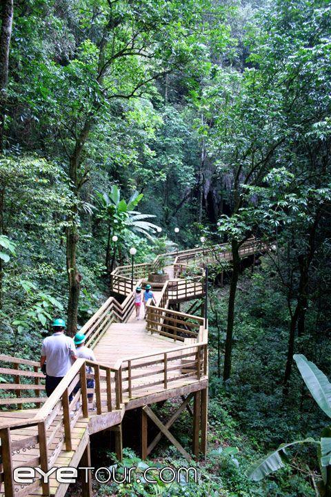 Parque de las Cavernas del Río Camuy- #PuertoRico
