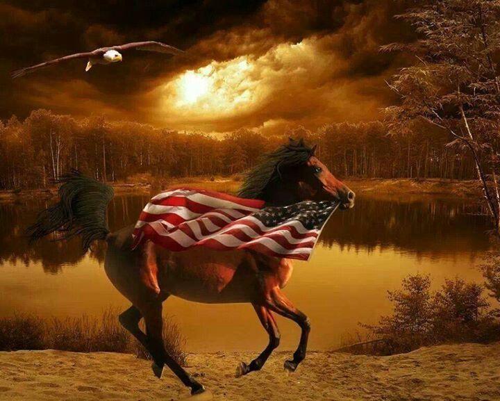 american flag running pants