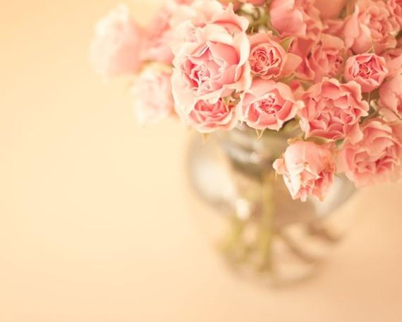 pink: Garden Roses, Shabby Chic, Flower Gardens, Beautiful Flowers, Ah Pink Roses, Flowers Rose, Photo, Colorful Roses
