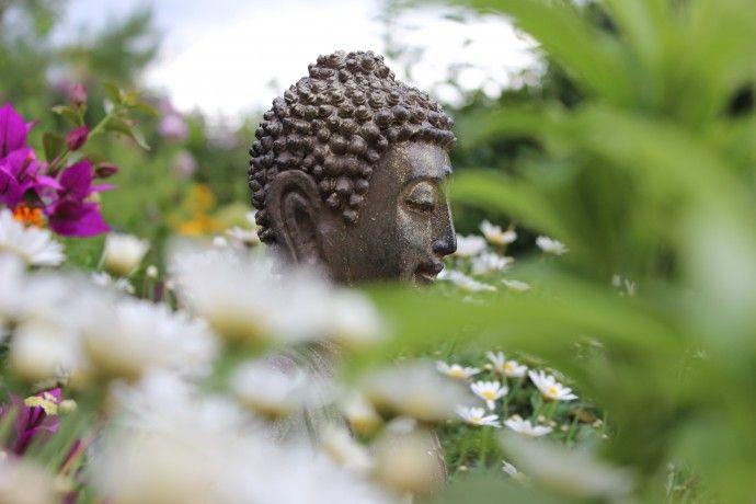 Ich biete dir Liebe an. Ich biete Dir Frieden an. Ich biete dir Freundschaft an. Ich sehe deine Schönheit.Ich höre was du brauchst. Ich spüre deine Gefühle. Meine Weisheit fließt aus der höchsten Quelle. Ich grüße diese Quelle in dir. Lass uns zusammenarbeiten. Für Einheit und Frieden.  Gandhis Gebet für den Frieden
