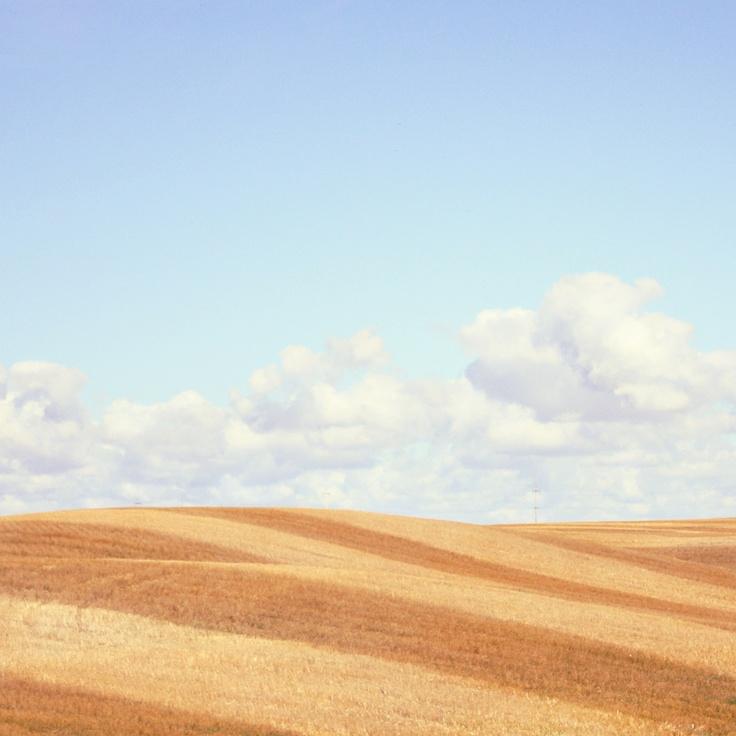 Canadian Prairies - By Oana Romaniuc