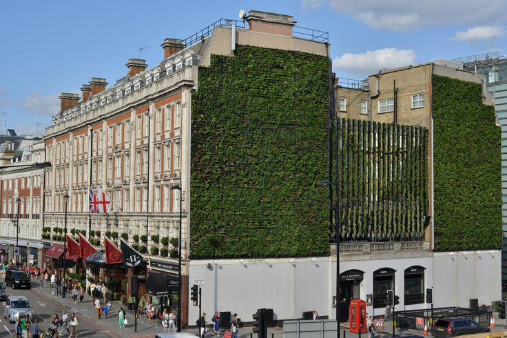 Cools building by 30 degrees. A coverage of vegetation over a building can dramatically reduce the need for additional cooling in summer. The vegetation also works as a blanket to reduce heat loss from a building in winter. Studies have shown considerable energy savings.