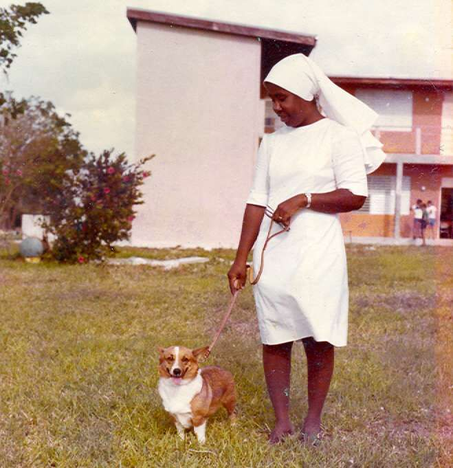 1977 St. Ignatius Catholic School principal Sister Sheila and her Corgi, Heidi at Exhibition of Pure Bred dogs, Catholic School's Easter Fair on April 11. Photo: Ann Stafford, Grand Cayman. Photo in CaymanSports - Google Photos