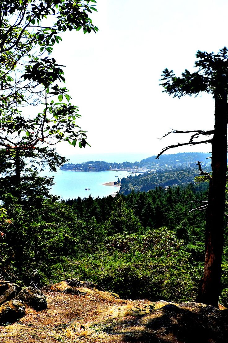 The Sunshine Coast is one of British Columbia's (Canada) hidden gems! This view of the marina town, Gibsons, is taken from Soames Hill. A short hike with spectacular views.
