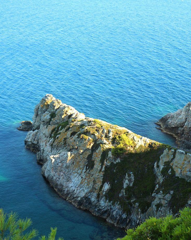 #Porquerolles (Îles d'Hyères) France