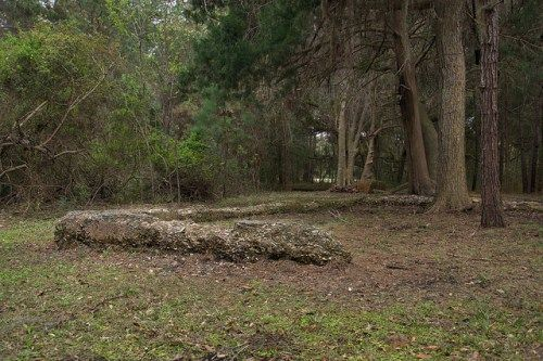 The Hofwyl-Broadfield Plantation in Brunswick, GA, includes the tabby foundations of a rice mill. (Photo by Brian Brown, Vanishing Coastal Georgia). The plantation is now a state park (http://www.gastateparks.org/HofwylBroadfield).