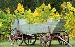 Old Cart Farm