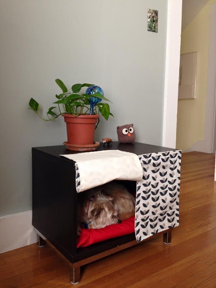 22 best creative pet homes images on pinterest. Black Bedroom Furniture Sets. Home Design Ideas