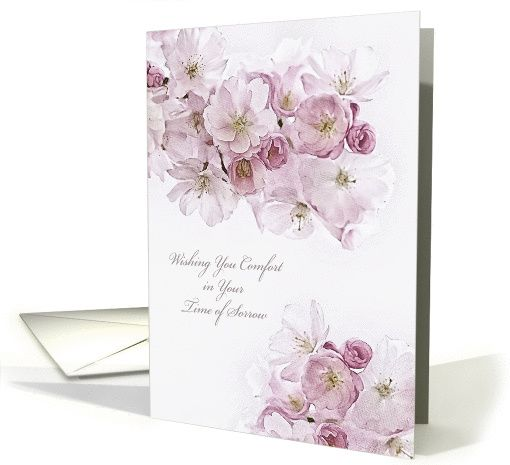 The 141 best sympathy and condolences paper greeting cards images wishing you comfort christian scripture sympathy card white blossoms card colourmoves
