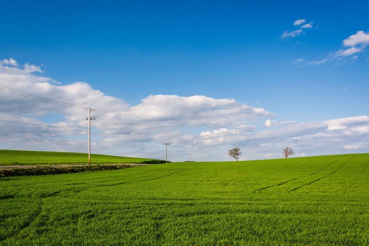 Grassy field in a rural area of York County, Pennsylvania. Photo Print on Canvas, Metal, or Framed.