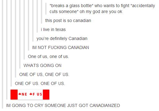 This reminds me of when robin found out that Barney was one quarter canadian