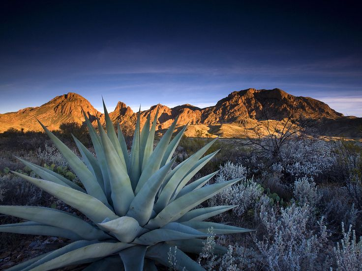 Chisos Mountains - Big Bend NP, Texas