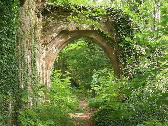 im Pfälzer Wald | Reiseführer Rheinland-Pfalz | Travunity - Die ...