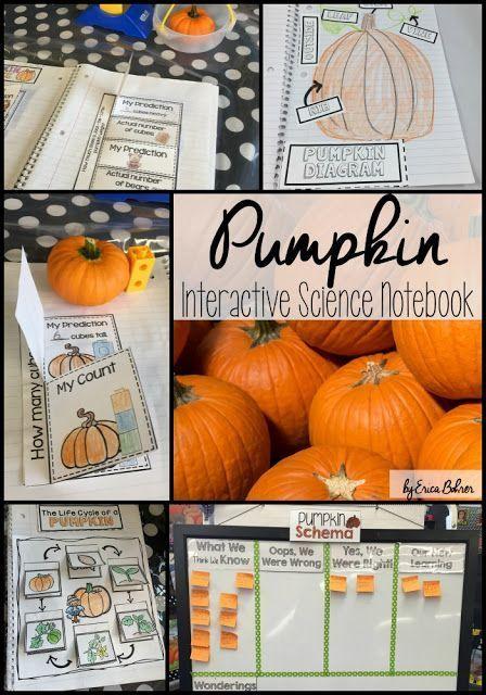 Pumpkin Interactive Science Notebook