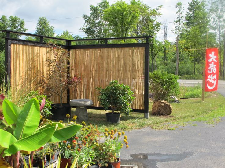 Top 25 best Bamboo privacy fence ideas on Pinterest Patio