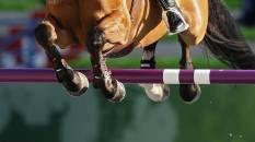 Notizie per salto ostacoli