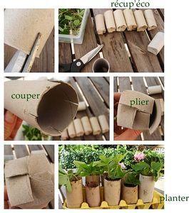 Des petits pots dans les rouleaux de papier toilette