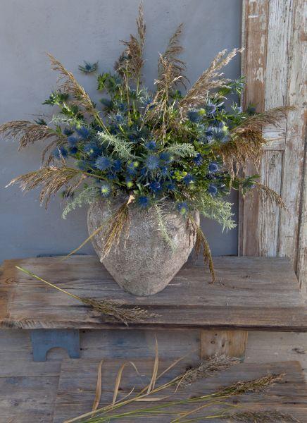 Bloemen en grassen op de weidse, golvende grasvlaktes van deze aarde zijn spijkerharde types. Ze trotseren extreme droogte, buiige maanden, stormen en af en toe een brand. Met een prairieboeket haalt u de onoverwinnelijke schoonheid van deze bloeiers in huis. Naast distels weerstaan ook bloemen en grassen als vetkruid, leverkruid, papaver, maïsgrassen en rietpluimen de … (Lees verder…)