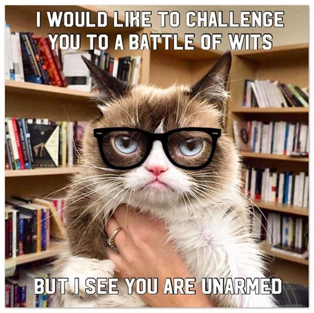 Grumpy Cat Would Like To Challenge You To A Battle Of Wits Are You Armed Or Unarmed Catsfunnysayings Funny Grumpy Cat Memes Grumpy Cat Grumpy Cat Meme