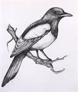 Simple Bird Drawings In Pencil Here S A Little Birds ...