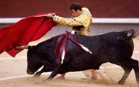 bullfighting speech A futbol match, a bullfight, or a flamenco performance in flamenco, which  shares perhaps the most intimate connection to the word's origin,.