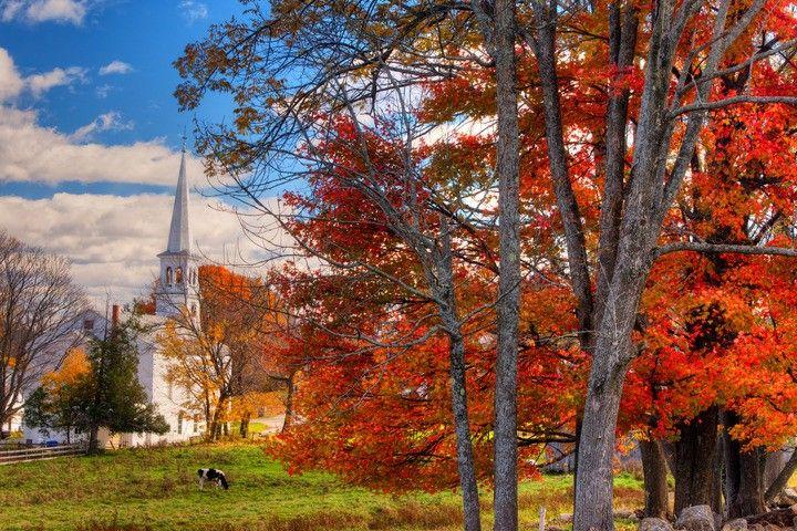Foliage in Peacham, Vermont