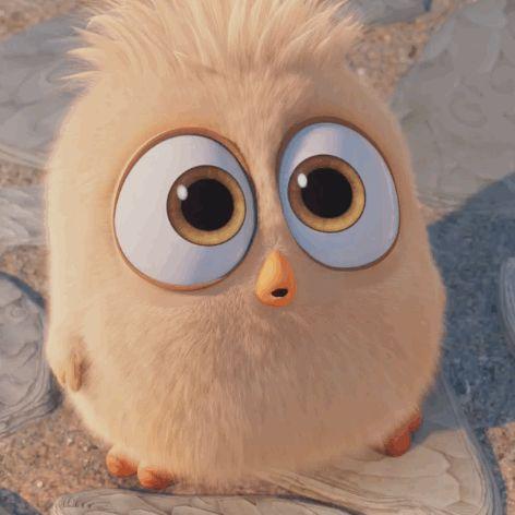 Na na na na... take that!  To cute!      Angry Birds cute trailer 2016 angry birds movie