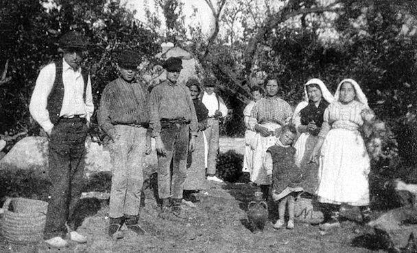 Recogida de la naranja en la huerta de Almassora años 20