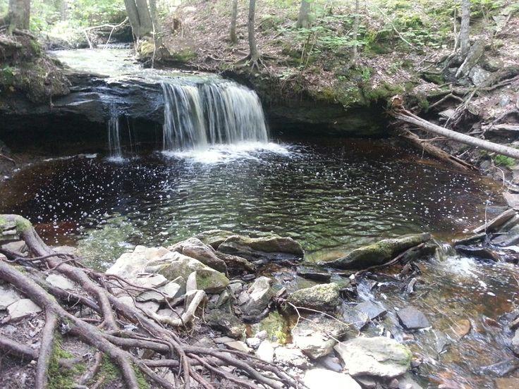 Scribner falls near central blissville, nb
