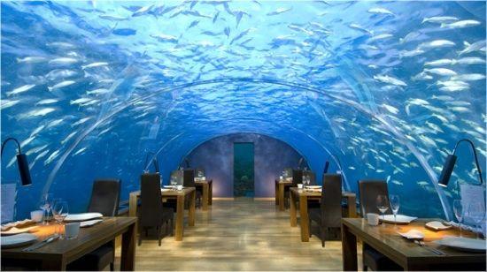 Ithaa Undersea Restaurant in the Maldives dine underwater on the Conrad Maldives Rangali Island