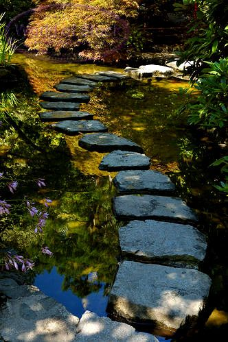 Japanese Water Garden Path