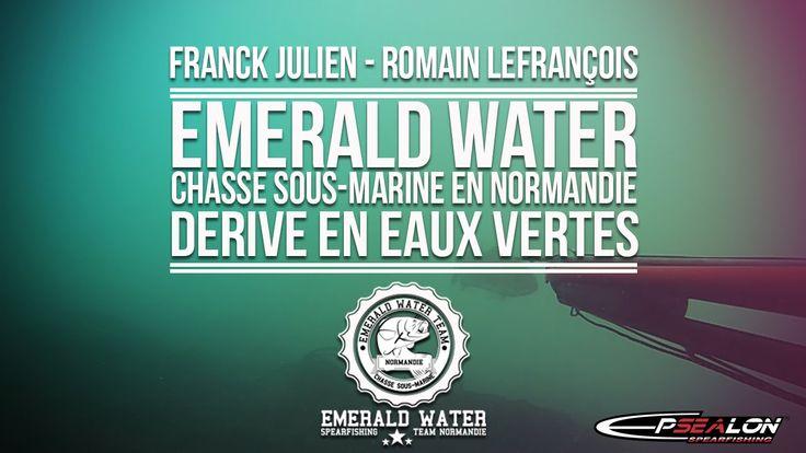 Dérive en eaux vertes - Chasse sous-marine