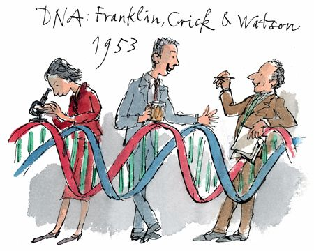 Rosalind's role in the discovery of DNA gets some belated recognition in a sketch by Quentin Blake, which was part of a series of works created for the 800th anniversary of Cambridge University in 2009