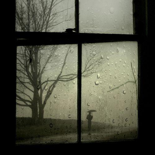 a winter rain...