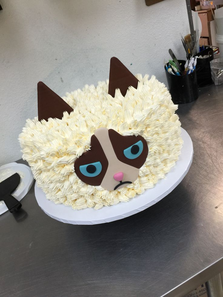 The 25 best Grumpy cat cakes ideas on Pinterest Paw print cakes