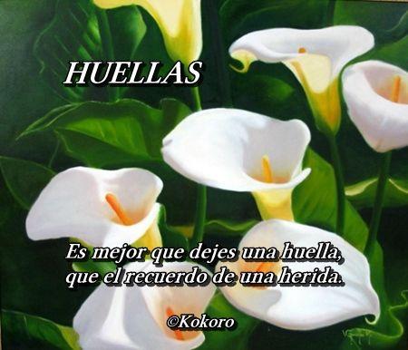 HUELLAS, un poema de Francisco Pelufo • ©Kokoro • @KOKOROALMA @Esveritate http://kokoroalmapoesia.blogspot.com.es/2017/05/huellas.html