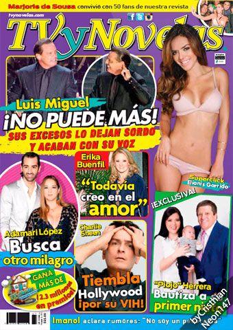 TV y Novelas México - 23 Noviembre 2015 - Luis Miguel ¡no puede más!