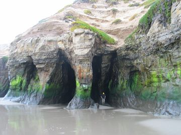 The Sea Caves at Surf Beach - Central Coast Hiking Group (Santa Maria, CA)