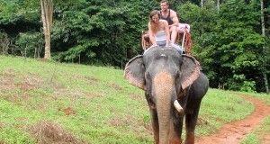 Elephant Trekking, Khao Sok National Park, Thailand