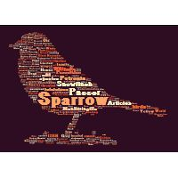 Tagxedo.com.  You can use one of Tagxedo's images or upload your own.  You then create a Wordle in the shape of the image.