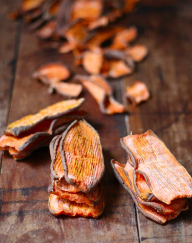 The One-Ingredient Dog Chew You Can Make at Home